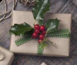 Christmas Gift Wrap-Palooza taught by Kerri Fleming
